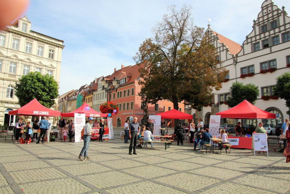 Bild: LINKE-Fraktion in Naumburg